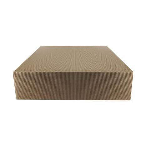 Geschenkbox    Karton 2er       GVE 1