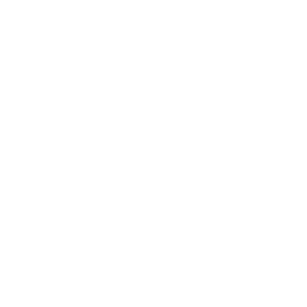 PLASTIKSTEIGE LEER  RAUCH 0.7L  GVE 1